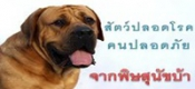สัตว์ปลอดโรค คนปลอดภัย จากโรคพิษสุนัขบ้า
